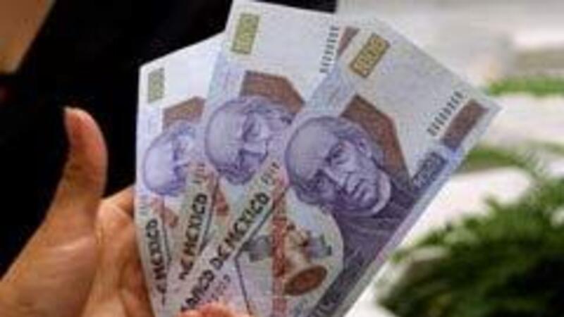 Evite multas, pagando la PTU a sus trabajadores correctamente