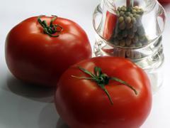 Acuerdo entre México y EU sobre exportaciones mexicanas de tomate