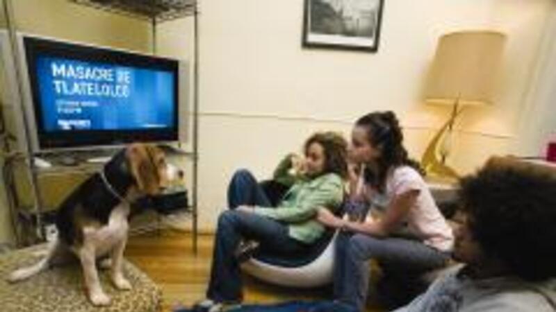 Poca penetración de la TV digital