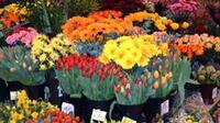 Personal de la dependencia verificará establecimientos como florerías, restaurantes, tiendas de regalos y dulcerías